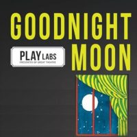 PLAYLABS: GOODNIGHT MOON