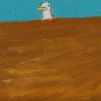 Chris Monroe - Books, Pictures and a Seagull