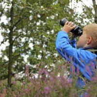 Junior Birding Adventure