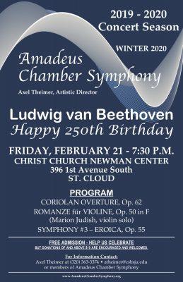 Amadeus Chamber Symphony