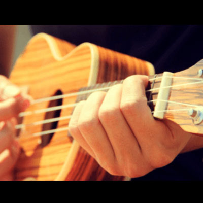 Learn to Play the Ukulele: from pick-up to perform...