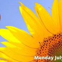 Millstream Night Market July 12