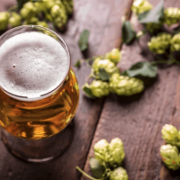 Hops and History