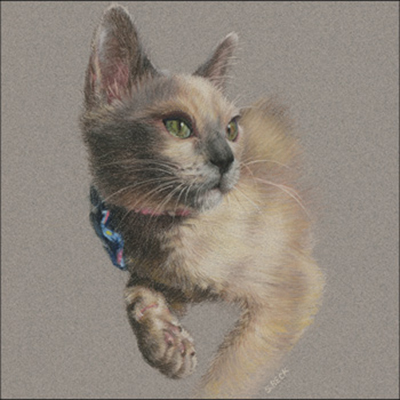 Pastel Pencil Pet Portraits with Suzann Beck