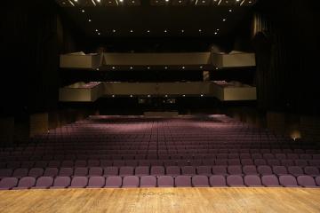 CSB Benedicta Arts Center - Escher Auditorium